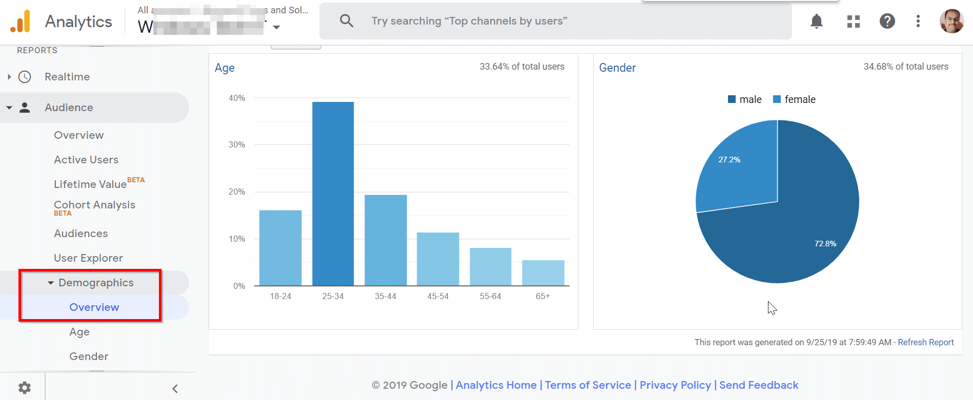 How to view Demographic Data in Google Analytics